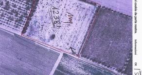 Terreno Agricolo Posta Pila